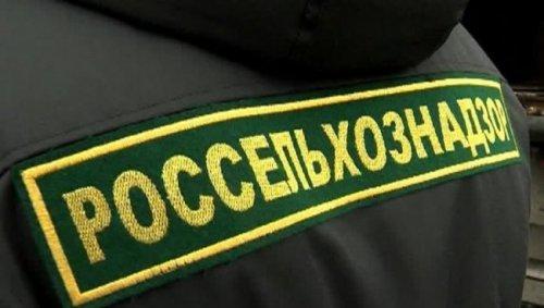 Россельхознадзор вновь усомнился вчестности белорусских госорганов - «Белоруссия»
