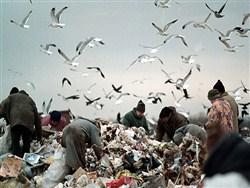 """""""Столько нищеты не видела даже в Сирии"""" - «Новости дня»"""
